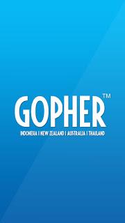 Berbagai Keunggulan Gopher Indonesia untuk Bisnis Anda