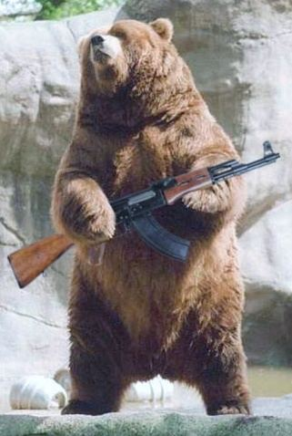 What Is Correct Bear Arms Or Bare Arms? Quora