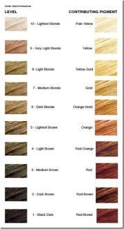 light ash blonde dye