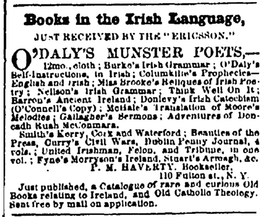 How many Irish in the 19th century came to the US with