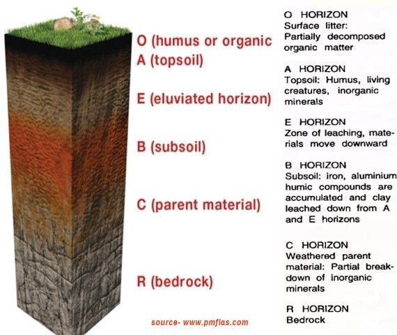 horizon diagram soil formation phase program how is formed quora check this