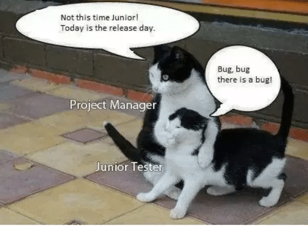 What are some the best software testing jokes and memes  Quora