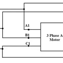 Wiring Diagram Of Single Phase Motor Starter 1993 Chevy Silverado How To Connect 3 Motors In Star And Delta Connection Quora Is A Type Starting Method Ac Induction Normally Used For Smooth