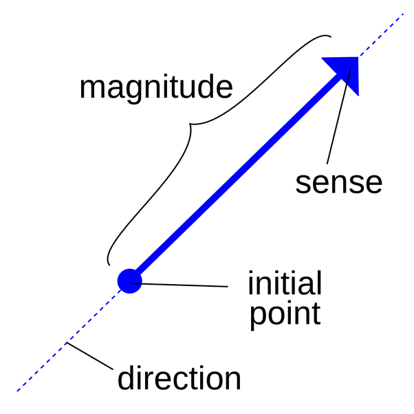 What is Euclidean space and how is it related to a vector