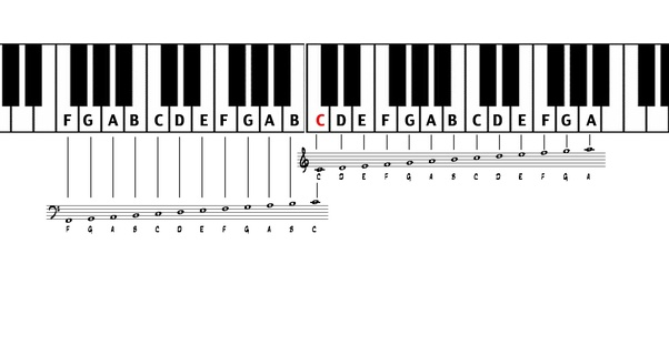 Note Names Of The White Keys Or The Basic Notes