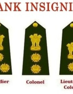 Indian army officers rank structure also what are the ranks in quora rh