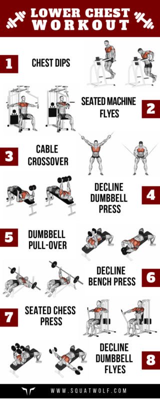 What are the best exercises for the lower chest? - Quora