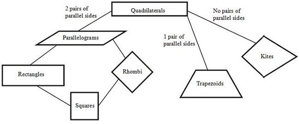 What common ground do rhombus, parallelograms, squares