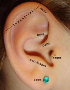 Along with natural antibacterial enzymes which kill bacteria  help protect healthy living cells healing cleansing solution  ocean safely also how to clean  daith piercing quora rh