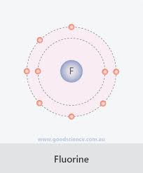 How Many Valence Electrons Does Fluorine : valence, electrons, fluorine, Valence, Electrons, Fluorine, Learn.lif.co.id