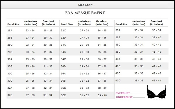 How to find your bra size without a tape measure - Quora