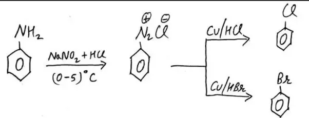 What is the difference between the Sandmeyer reaction and