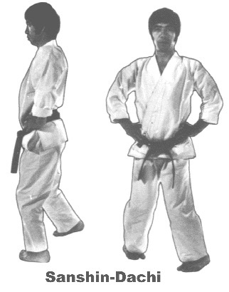 Tehnik Dasar Karate : tehnik, dasar, karate, There, Martial, Techniques, Lessen, Effects, (other, Cup)?, Quora