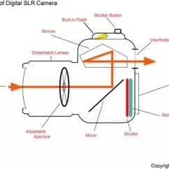 Slr Camera Diagram Wiring For Gm Alternator How To Tell If Your Is A Dslr Quora Cameras Have Mirror Which Works Like Periscope Reflect Light From The Lens Viewfinder As Shown In Below