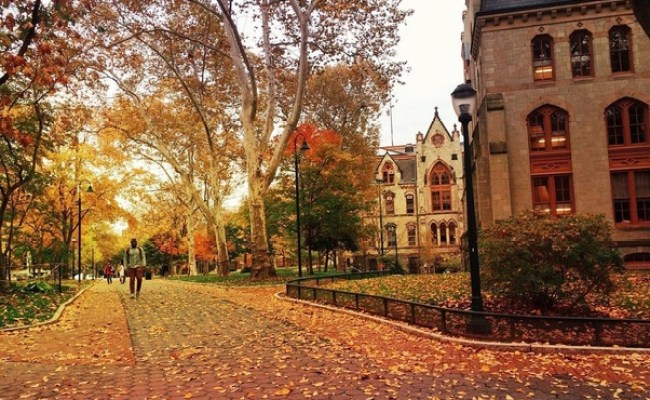 Of All The Ivy League Colleges Which Has The Most