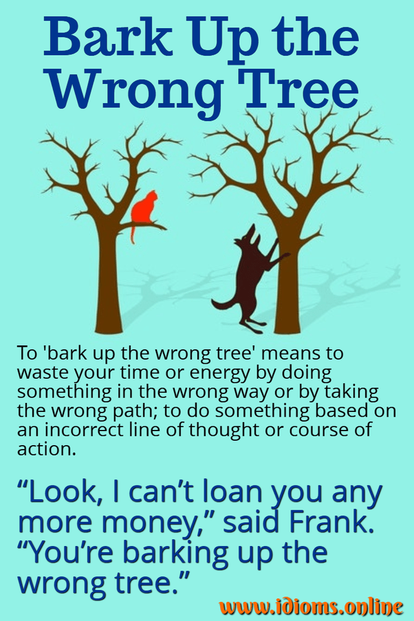 "Barking Up The Wrong Tree : barking, wrong, Meaning, ""barking, Wrong, Tree""?, Include, Example,, Quora"