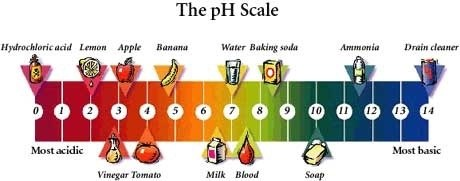 What are some examples of acidic substances? - Quora