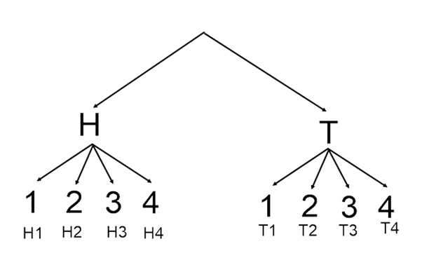 Which tree diagram shows all of the possible outcomes for