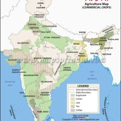 Types Of Rainfall With Diagrams Site To Vpn Diagram What Are The Cash Crops In India? - Quora