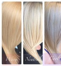 What category does a natural blonde fall on cool, warm or ...