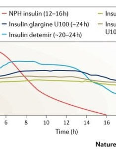 These graphs show how poorly nph insulin performs as   clong acting   also for diabetics do you deal with having to take your shots and rh quora