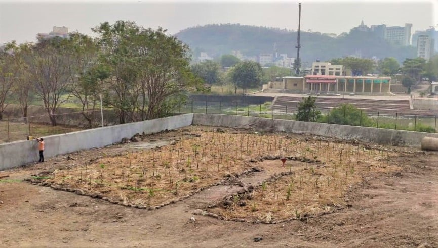 It is a land with no wilderness. What Is The Miyawaki Method Of Tree Plantation Quora