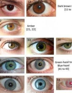 The eye color chart also why are black eyes rare in people quora rh