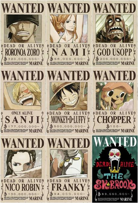 Sejak memulai perjalanan mengarungi lautan, monkey d. Why Does Nico Robin Have The Most Undervalued Bounty Among The Straw Hats Quora