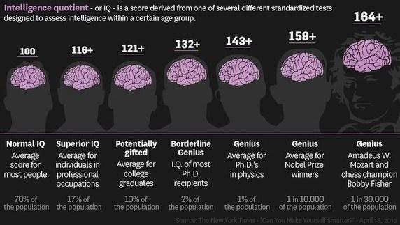 Intelligence Iq Test Answers