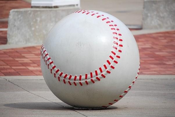 Baseball Bat Halves