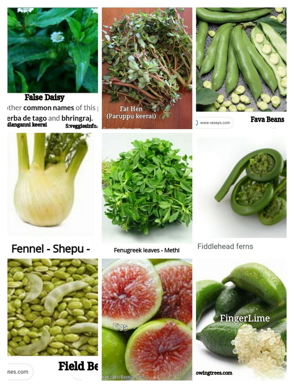 What are vegetables that start with F? - Quora