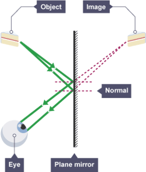How can we show lateral inversion by a plane mirror by a ray diagram?  Quora