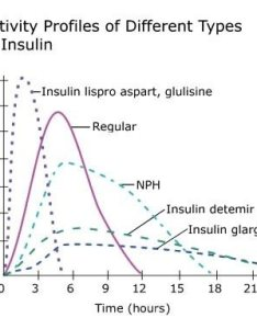 apologis for the size of this chart below second from bottom profile is  premixed insulin with two peaks also what are different types quora rh
