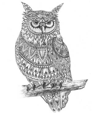 drawing animal drawings owl graphic pattern aztec hand draw easy things simple patterns outline designs examples graphics animals owls drawn