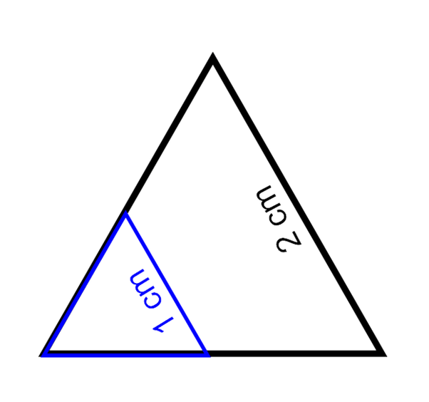 How would you explain why two equiangular triangles are