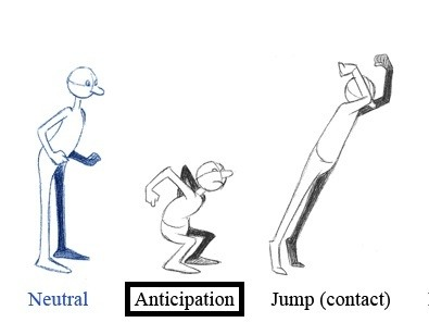 How can 'anticipation' in the context of animation be