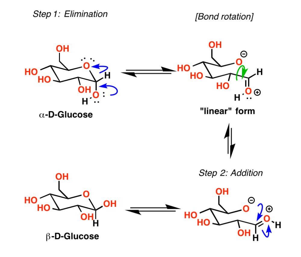 medium resolution of in aqueous solution the cyclic hemiacetal forms of sugars reach equilibrium with the straight chain linear forms beginning with a pure sample of