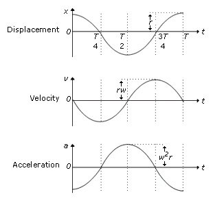 How is the displacement-time graph and velocity-time graph