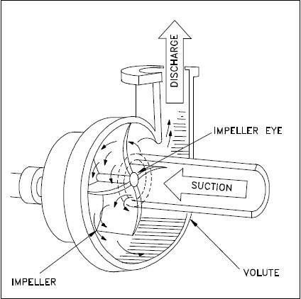 In which direction water enters in the centrifugal pump