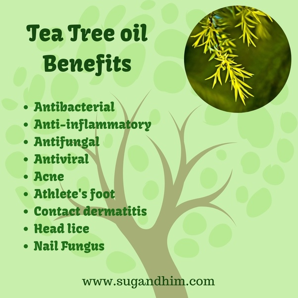 How effective is tea tree oil on an open wound? - Quora