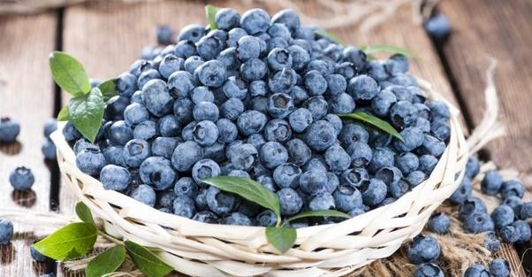 Why do blueberries cause diarrhea? - Quora