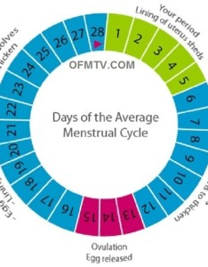 Track your period with this chart also can  girl get pregnant after the day of quora rh
