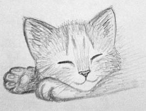 easy drawings beginner sketch objects really