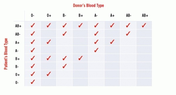 Does a person of o+blood group is a universal receiver