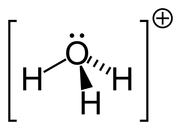 Can H+ ion combine with H2O and what is it's structure