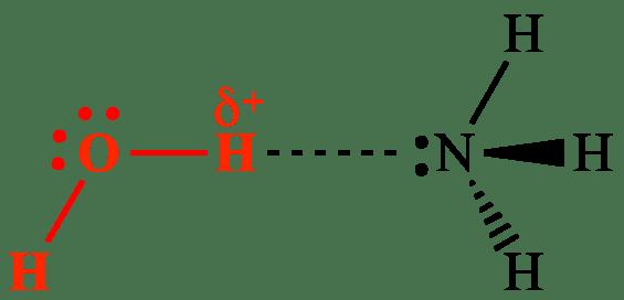 Why does hydrogen bond have the strongest intermolecular