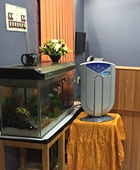 Which is the best room air purifier for NCR Delhi? - Quora