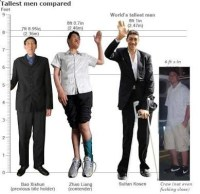 Would you consider 6'1' (185 cm) tall for a guy? - Quora