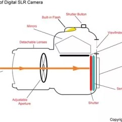 Slr Camera Diagram Portable Generator Transfer Switch Wiring How To Tell If Your Is A Dslr Quora So When The Mirror Up Viewfinder Goes Blank