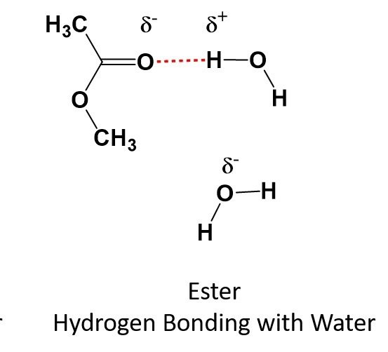 Can I remove water from a mixture of ethyl acetate and